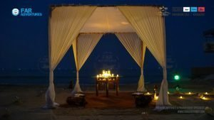 Romantic Private Tropical Dinner at Beach